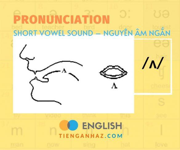 Pronunciation   Short vowel - Nguyên âm ngắn /ʌ/