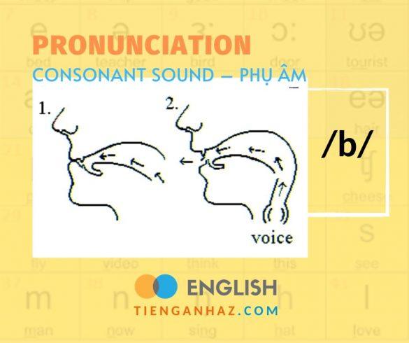 Consonant sound   Phụ âm /b/