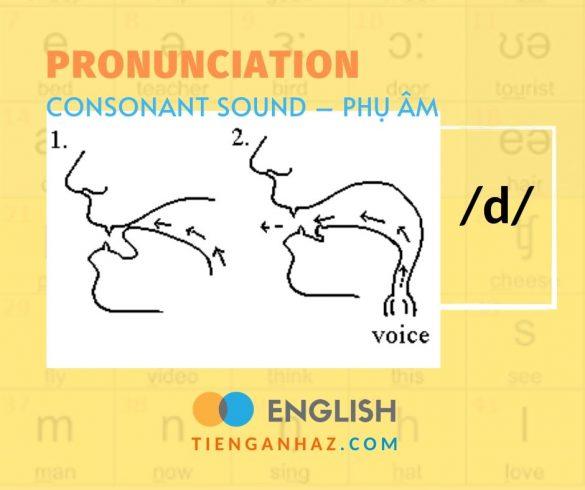 Consonant sound   Phụ âm /d/