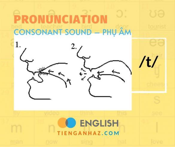 Consonant sound   Phụ âm /t/